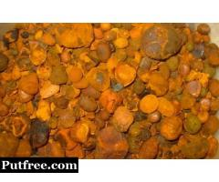 OX COW GALLSTONES FOR SALE