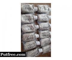 Buy Mushroom spawn at best price of Rs 100 /kilogram
