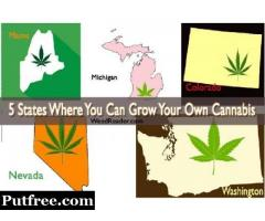 5 states where you can grow weed