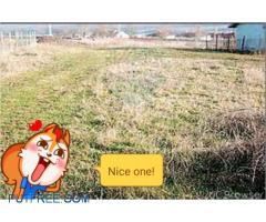 Farm land ten acres