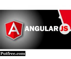 Best Angular Programming Online Certification Training