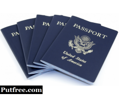 Novelty Passports, Drivers Licenses, ID cards ,