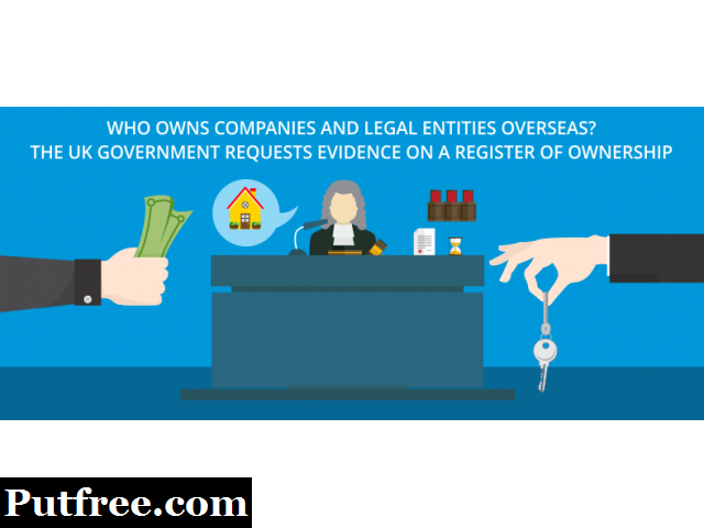 What are the Overseas company entities?