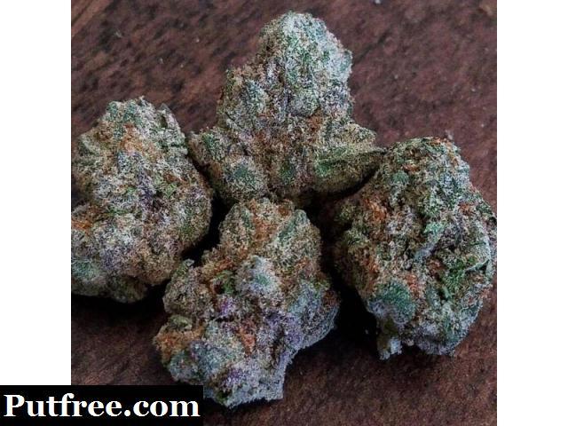 Buy Blueberry Kush Online - www.budssolution.com