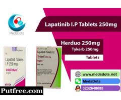 Buy Indian Lapatinib Online | Natco Tykerb 250mg Supplier | Herduo 250mg Tablets Price