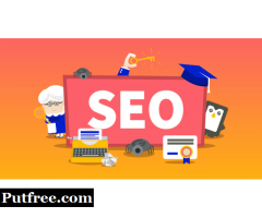Are looking for SEO Company in :Ludhiana?
