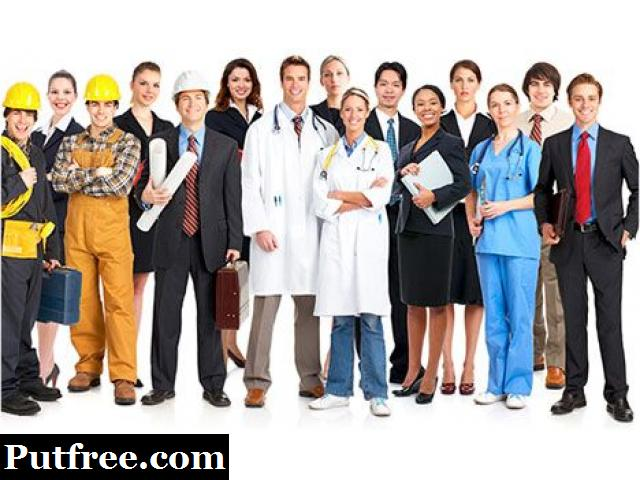 Specialist Recruitment Agency in Auckland