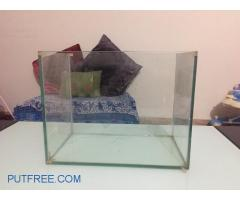 Glass fish tank aquarium