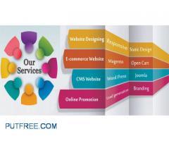Complete Web Designing & Web Development