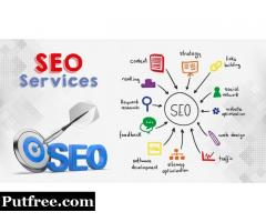 Best SEO Company in Delhi-NCR,India