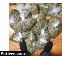 Top shelf marijuana strains available