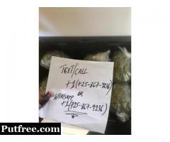 Top shelf marijuana strains available