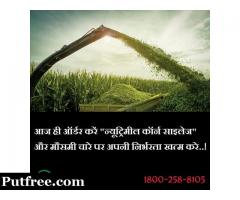 Silage Suppliers in Punjab
