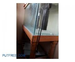 3feet fish tank
