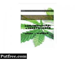 How can I buy legal marijuana in Canada?