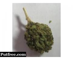Buy Sour Diesel Online - Green Medical Store