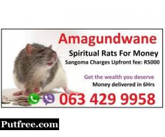 south Africa strong Money spells that work faster usa uk (@ spiritual rats) +27634299958