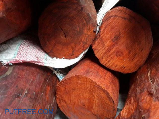 Red Sandalwood for sale