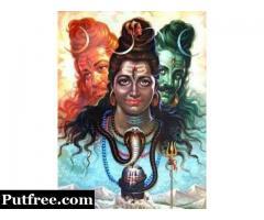 Who Is Best Astrologer In India +91-9971891391 Vk Shastri Ji Online Astrologer