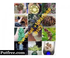Medical Marijuana for sale