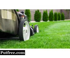Lawn Care Service Peterborough
