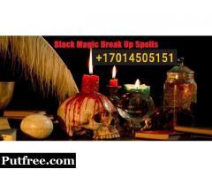 World Famous Free Black Magic Break Up Spells Specialist in USA