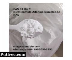 CAS 53-84-9     Nicotinamide Adenine Dinuclotide  NAD ( mia@crovellbio.com