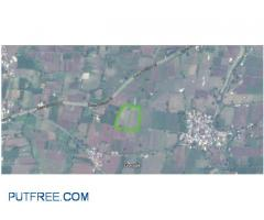6.5 bigha land for sale
