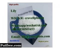 procaine factory sell cas 59-46-1 (Lily WICKR crovellpharm
