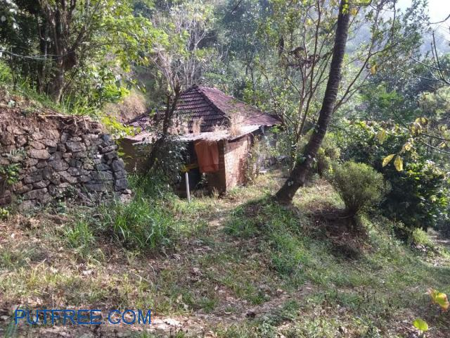 75 cents of land in idukki for sale