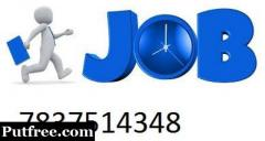 Required Computer Operator, SEO Executive, Content Writer - Part/Full time -