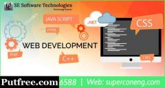 Professional Website Development Design Affordable Price Company