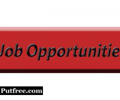 BEST PART TIME JOB OFFER FOR FRESHERS AND STUDENTS