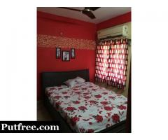 3 BHK well furnished flat