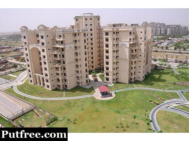Ious 3bhk Sq 2362sqft Stellar Icon Apartments Greater Noida For Rent