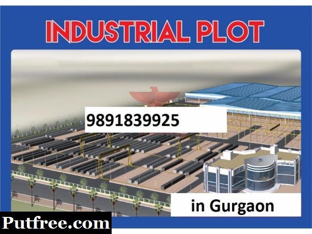 Industrial Lands/Plots 1000sqmtr for Sale in Phase 1, Udyog Vihar, Gurgaon Rs 13cr