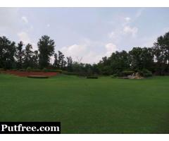 Farm house 2 Acre in Dera Mandi, Delhi South Rs.18 Crore