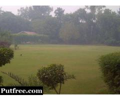 For Sale 1.25 Acre Farm house land near Bajghera road, Bijwasan, delhi 15cr