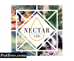 Online CBD Distillate Oils and Sweet Nectar| Nectar CBD