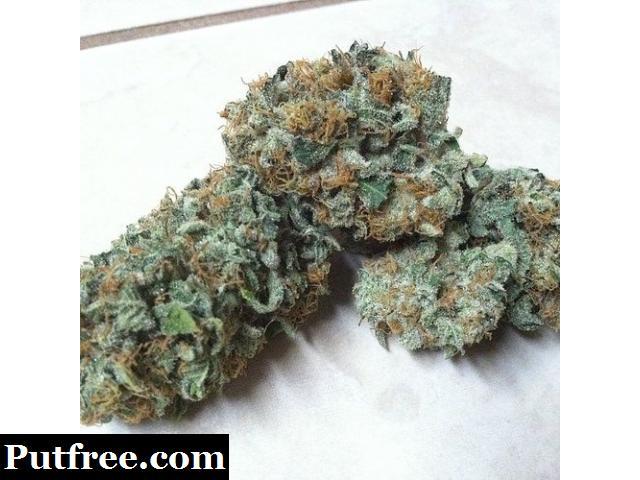 Buy your marijuana online