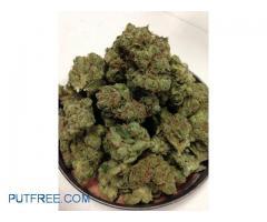 Buy Marijuana Online USA,Buy weed Online UK,Buy Marijuana Online Australia,Buy Moonrock Online UK
