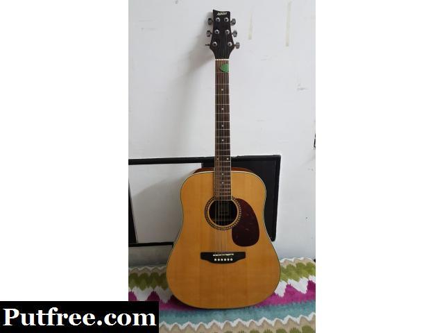 Ashton PDS25 NT Acoustic guitar