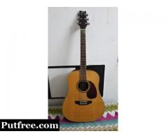 Ashton PDS25 NT Acoustic guitar