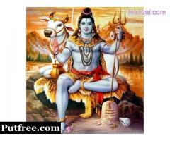 +91-9876425548 Family problem solution by Astrologer, Tantrik, Pandit, Baba jiin  Bishrampur
