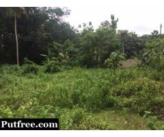 30.5 cent lorry site for urgent sale near Tkm Engineering College