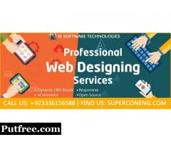 Hire Professional Web Development company for your Business