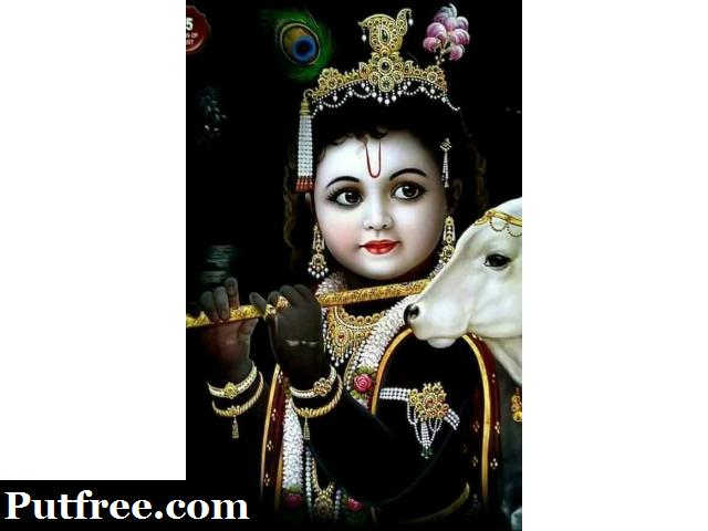 +91-9876425548 Get Your Love Back  in BHIWANITOSHAMTHILLOR