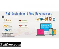 Get A Good Looking Website with The Best Web Design Services