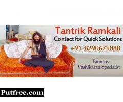 World Famous Vashikaran | +91-8290675088 | Black Magic Specialist