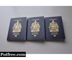 Buy Passport, Driver's License, ID, Birth Certificate online